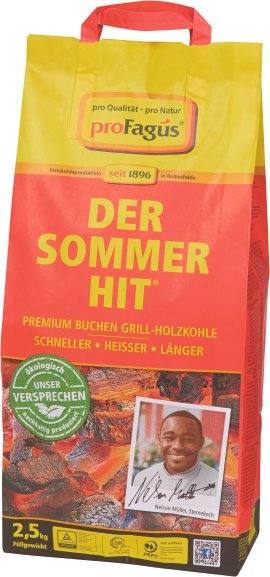 Grillkohle Sommer-Hit 2,5 kg