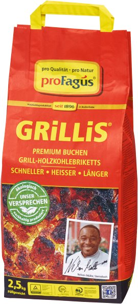 Profagus Grill Holzkohlebriketts Grillis pro Natur im Sack 10kg