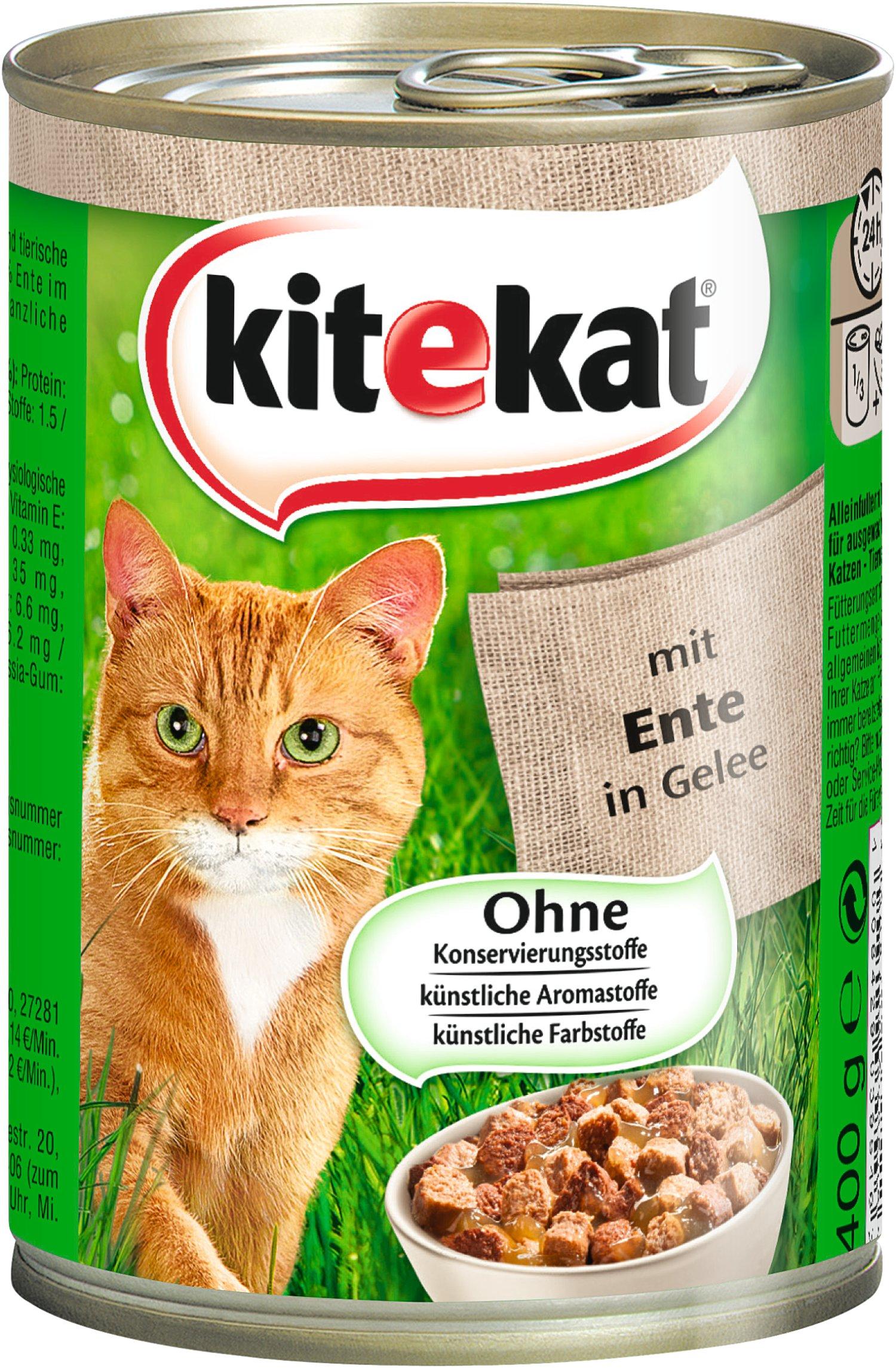 Der Atem Meiner Katze Riecht Nach Katzenfutter