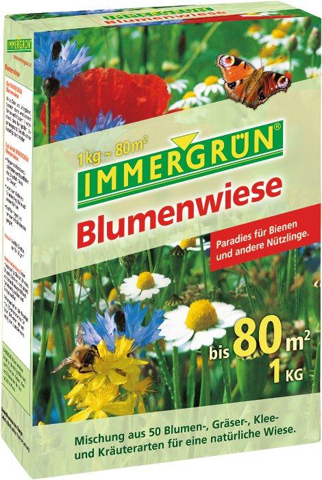 Etwas Neues genug IMMERGRÜN Blumenwiese 1 kg   Lagerhaus #NN_02