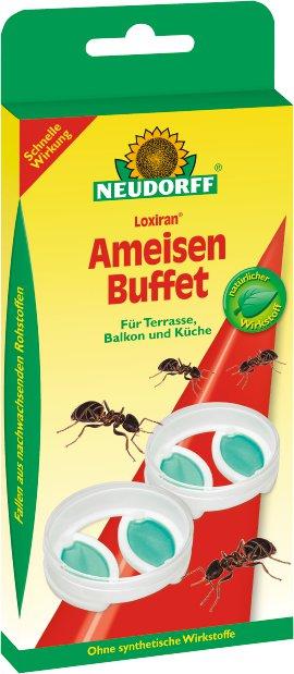 NEUDORFF Ameisenbuffet Loxiran 2er-PACK